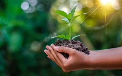 Agribusiness 2020: el tema del VIII Fórum Nacional de Agronegocios