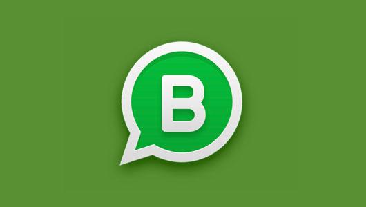 WhatsApp Business: Todo lo que tenés que saber – Capítulo 1 – I2MEDIALAB